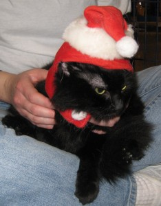 Sabrina also tolerated the humiliation.
