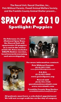 To Celebrate Spay Day 2010 The Rascal Unit And Charities Will Sterilize 50 60 Puppies On February 23 They Be Scheduling Between