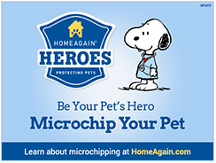 social_pin_microchip_thumb