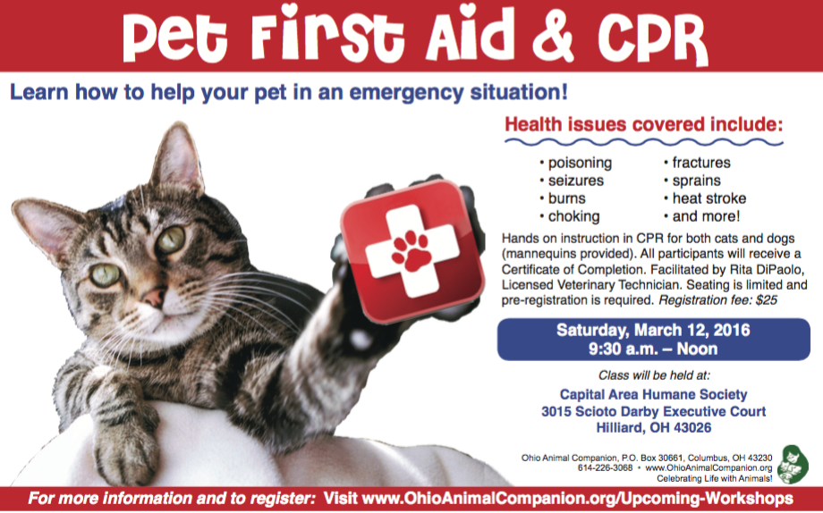 March 12 CPR Cat